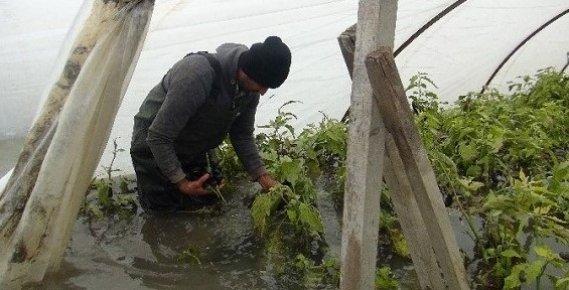 Ziraat Bankası'ndan Afet Mağduru Mersinli Çiftçilere Çağrı